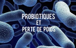 Probiotiques et Perte de Poids